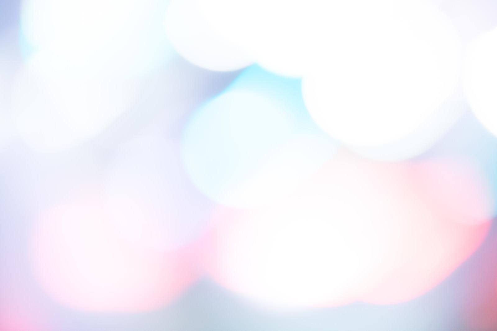 「淡くボケる光の中」の写真