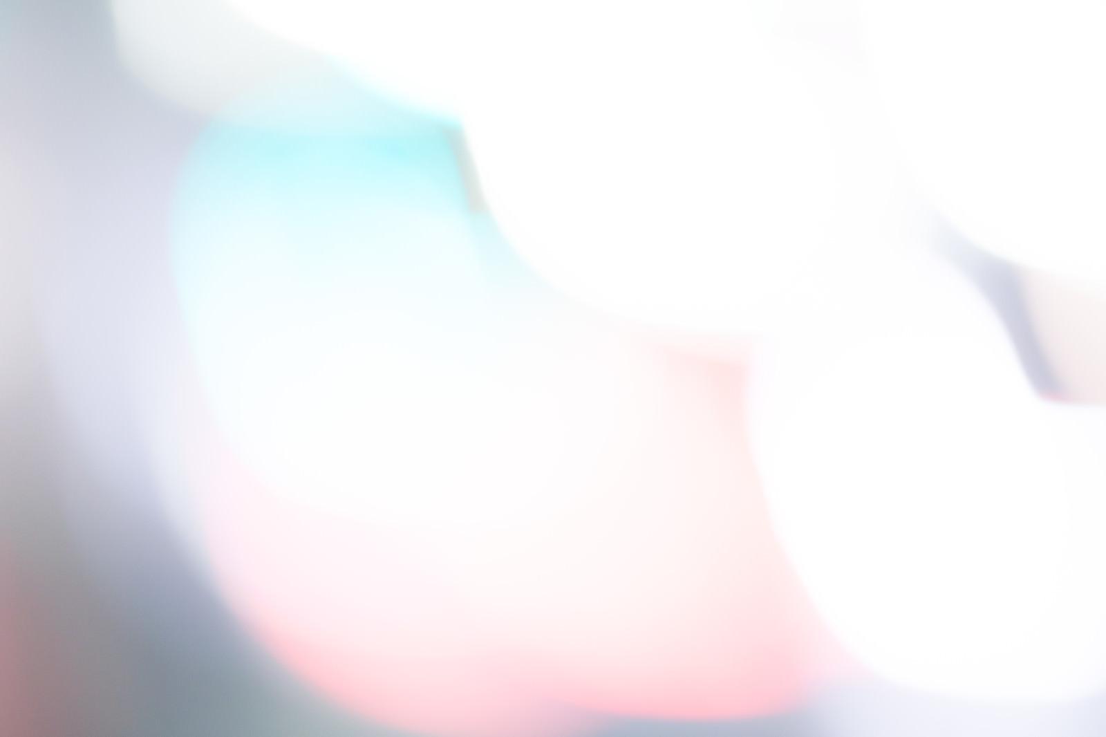 「閃光とボケ味」の写真