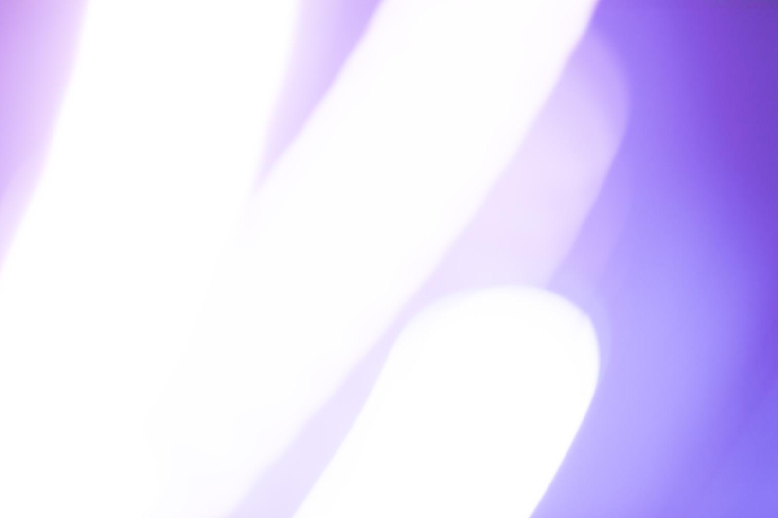 「紫と発光体」の写真