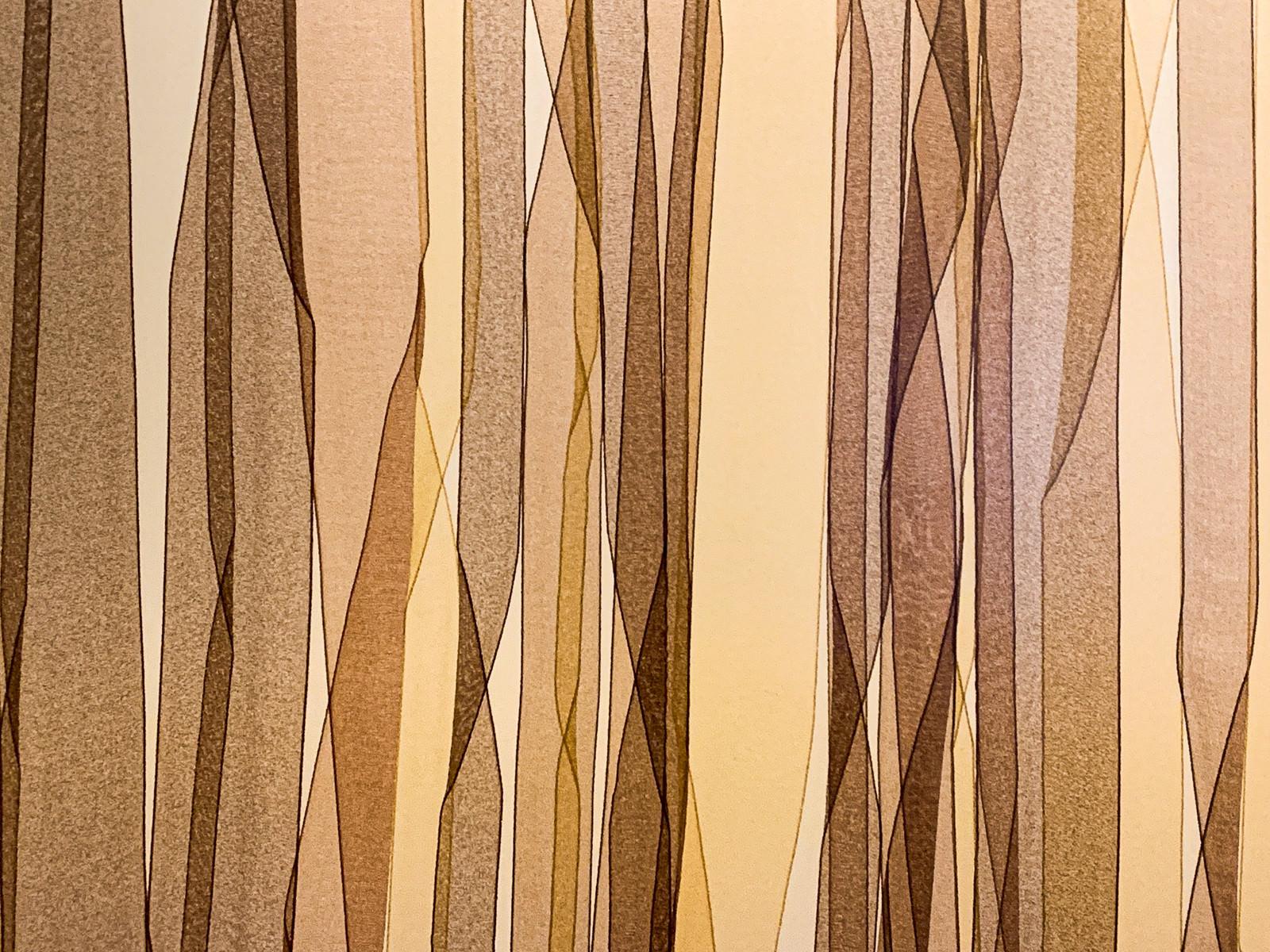 「不思議な模様の壁(テクスチャ)」の写真