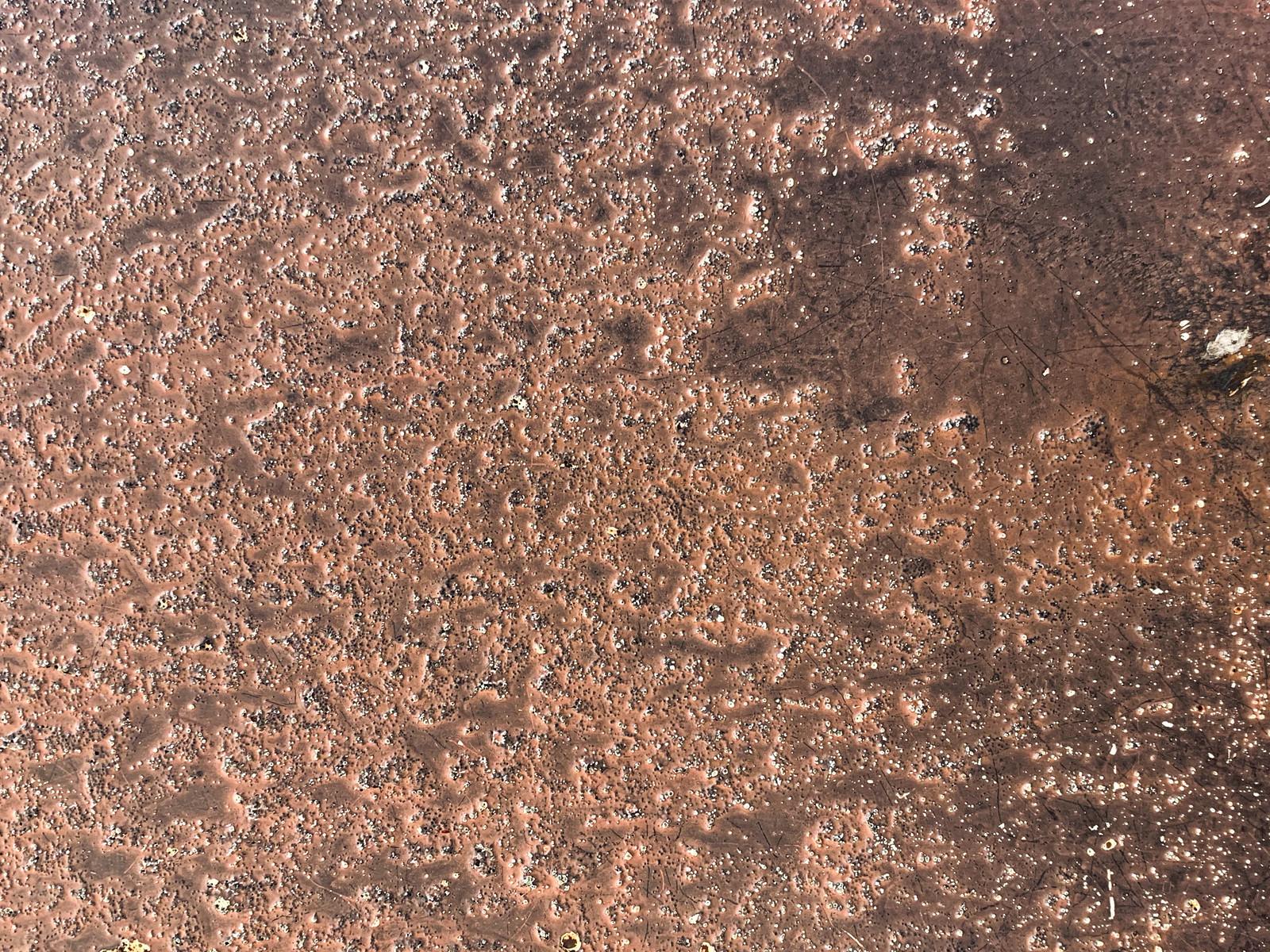 「鍛金中の銅板(テクスチャ)」の写真