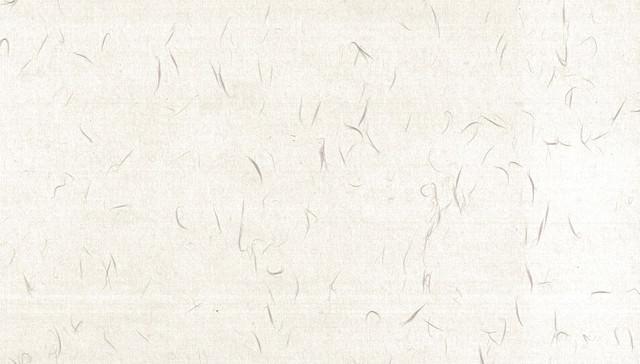 草の繊維の和紙の写真