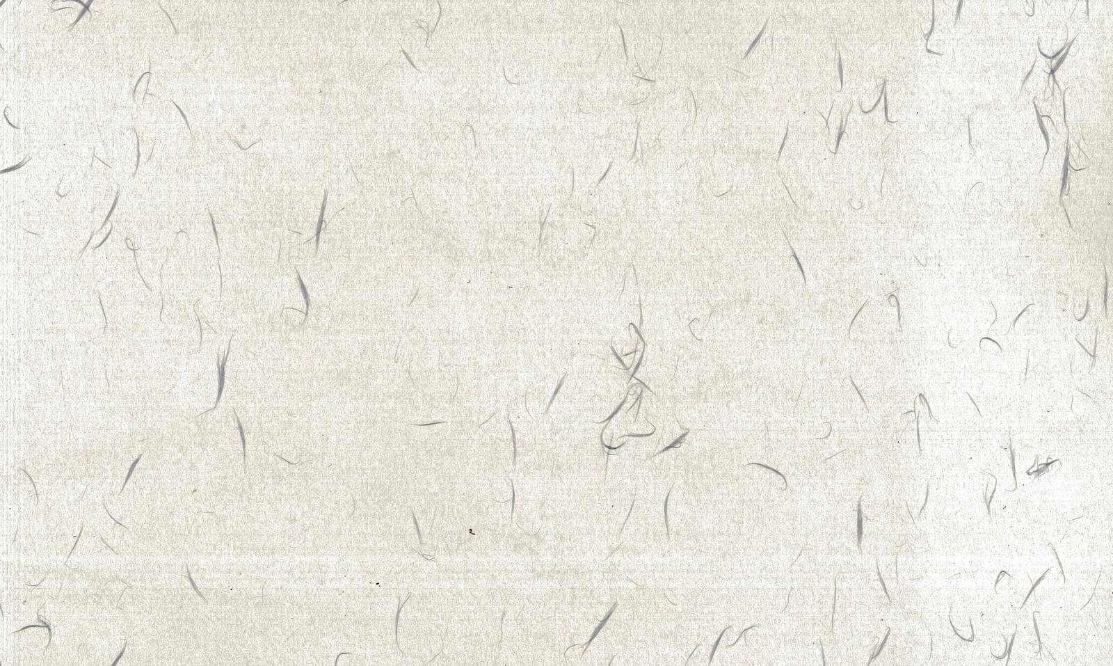 「繊維模様の和紙」の写真