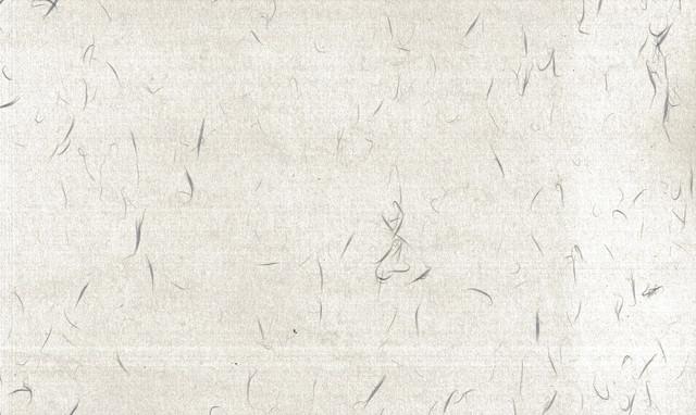 繊維模様の和紙の写真