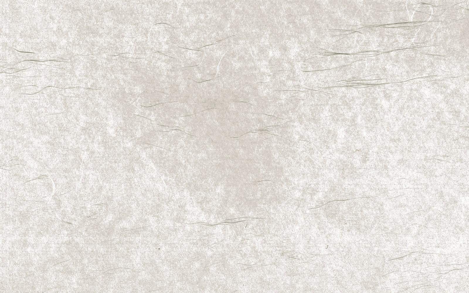 「細長い繊維の透けた和紙(テクスチャ)」の写真