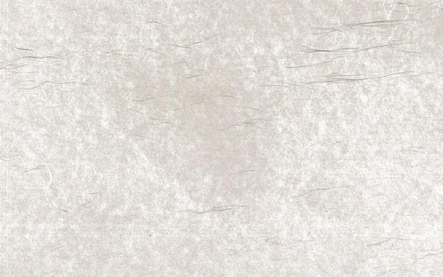 細長い繊維の透けた和紙(テクスチャ)の写真