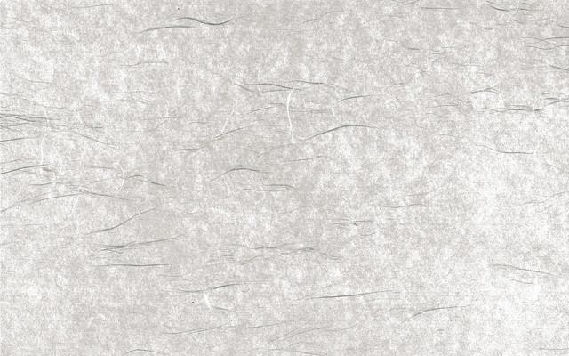 繊維が見える和紙のテクスチャーの写真