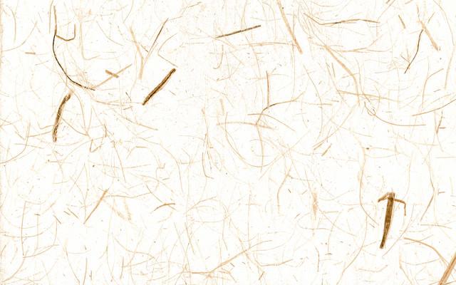 繊維が混じった和紙のテクスチャの写真