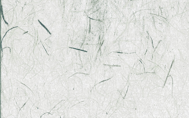 繊維が浮かび上がる和紙(テクスチャ)の写真