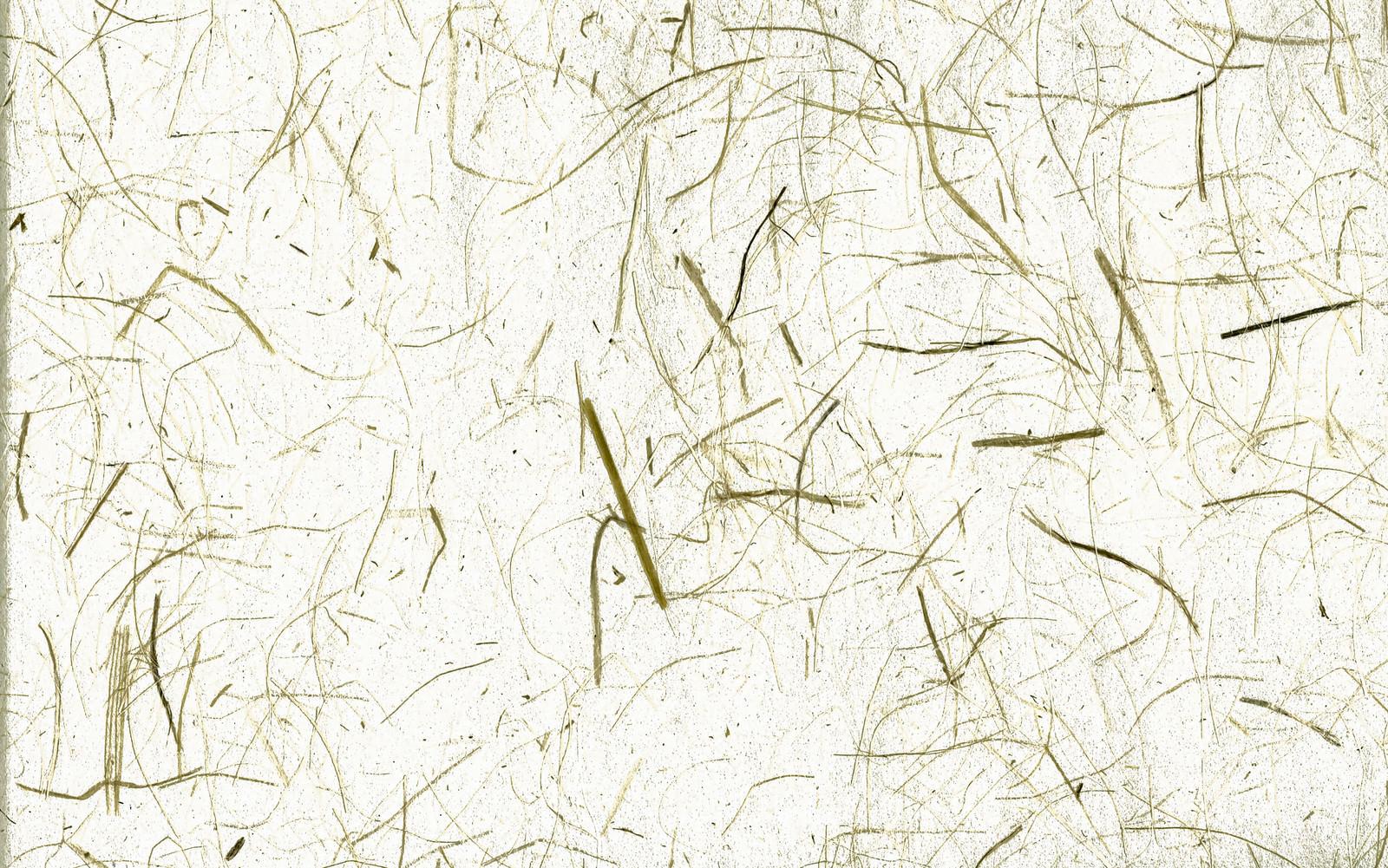 「繊維質がしっかり残る和紙(テクスチャ)」の写真