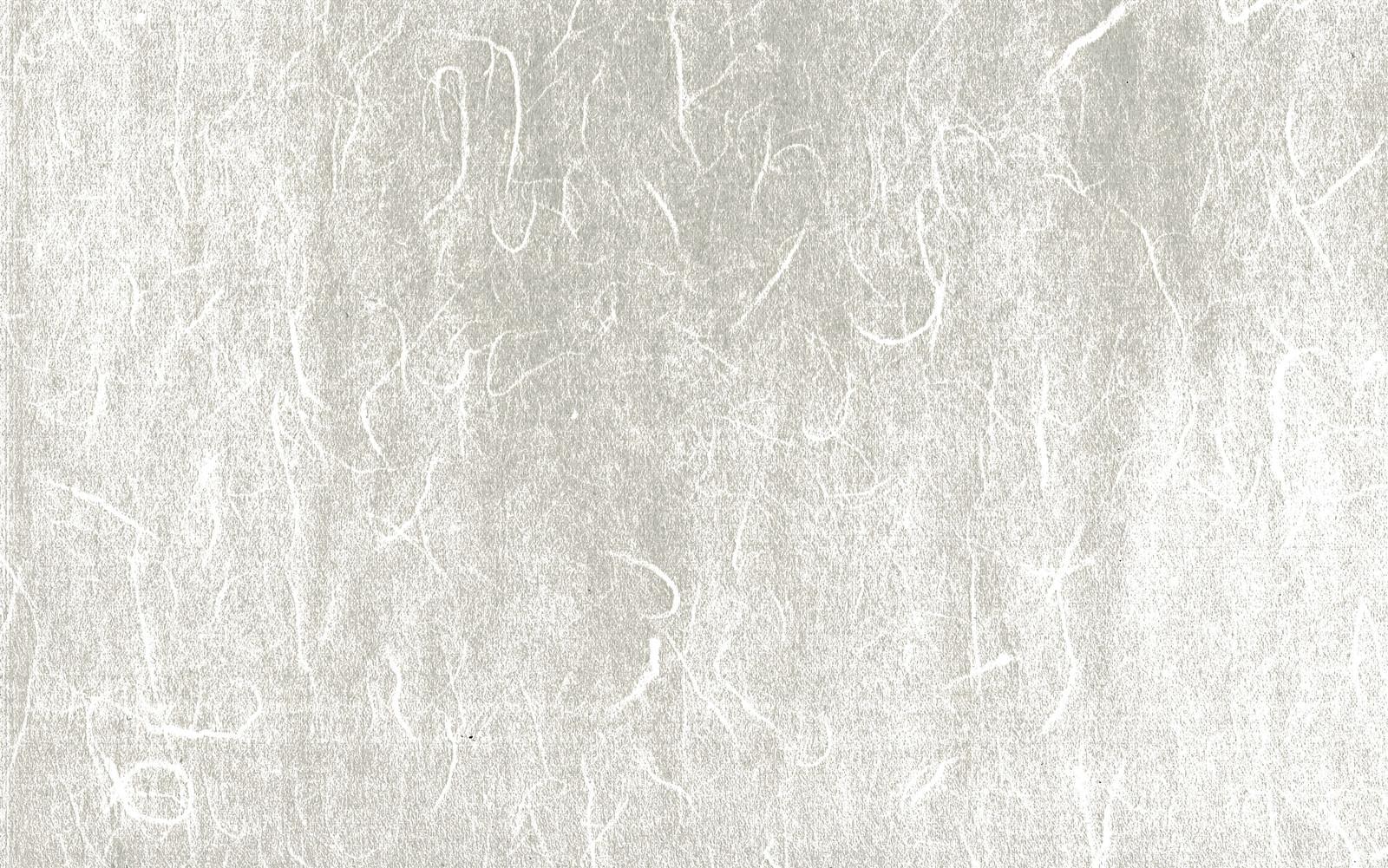 「筋が浮かぶ和紙(テクスチャ)」の写真