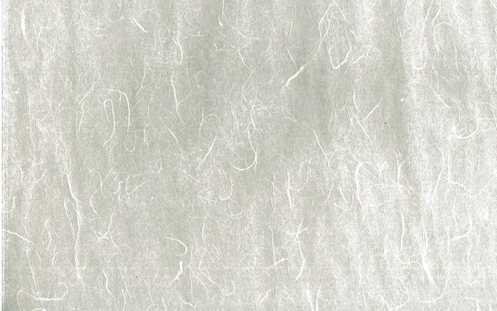 「繊維の筋が一面に浮かび上がる和紙(テクスチャ)」の写真