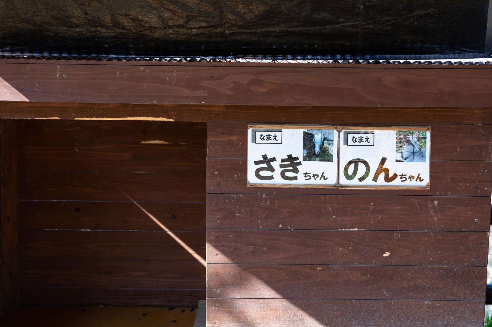 「崎野自然公園で飼育されてる山羊の名前(さきちゃんとのんちゃん)」の写真