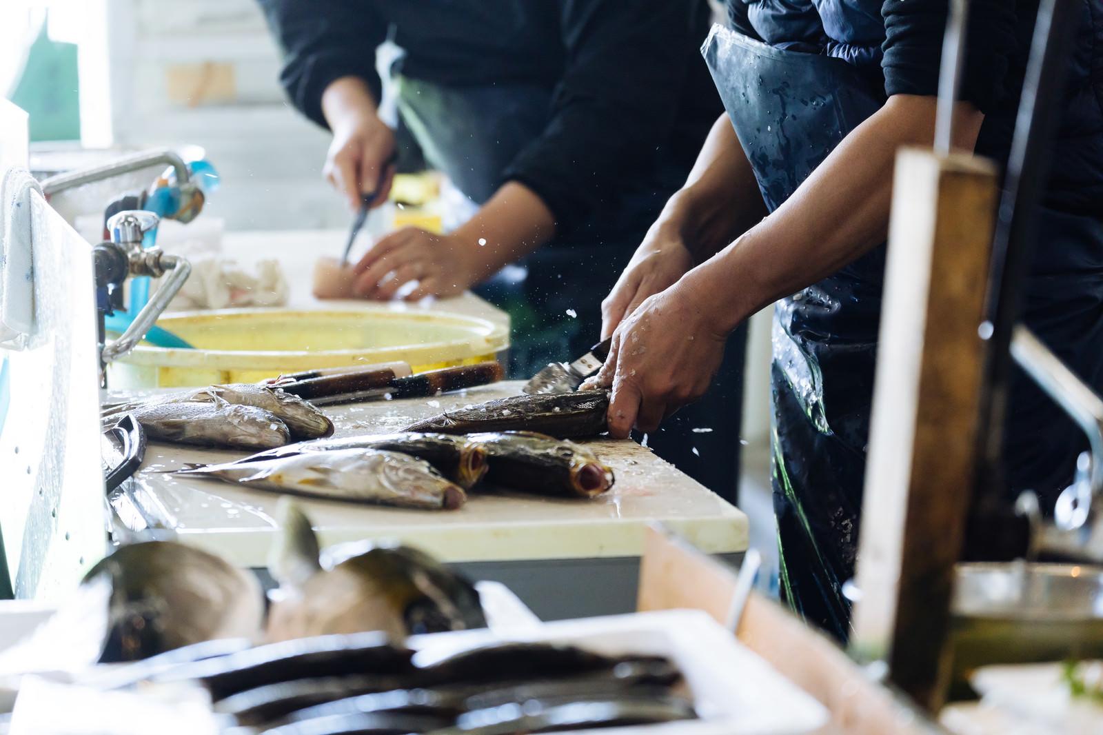 「魚のウロコ取りの様子」の写真