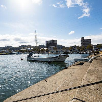 漁港内に停泊する漁船の写真