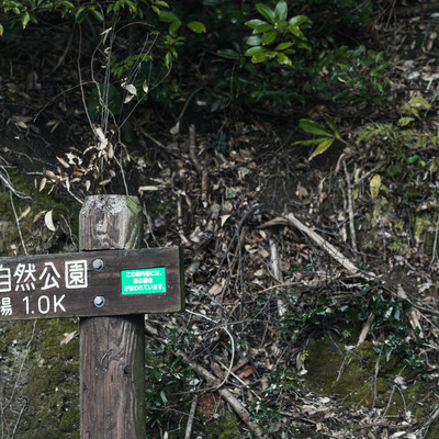 鳴鼓岳自然公園の道標の写真