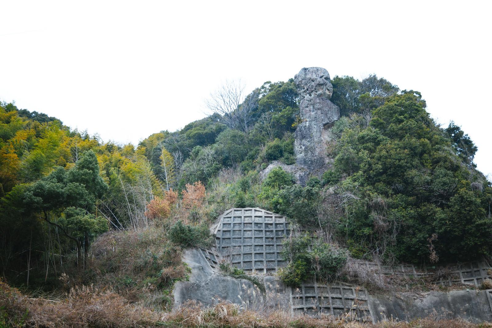 「崖上にそびえ立つ鯖くさらかし岩」の写真