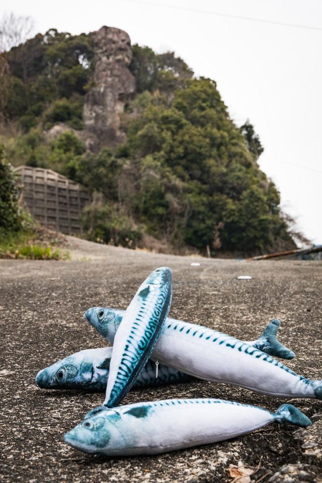 鯖くさらかし岩と鯖(ぬいぐるみ)の写真