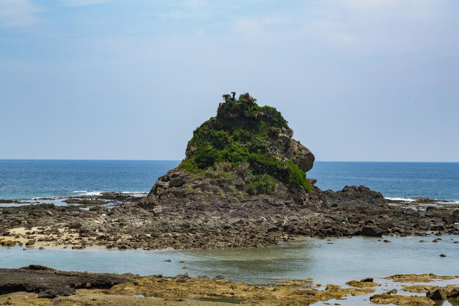 「徳之島ゴリラ岩」の写真