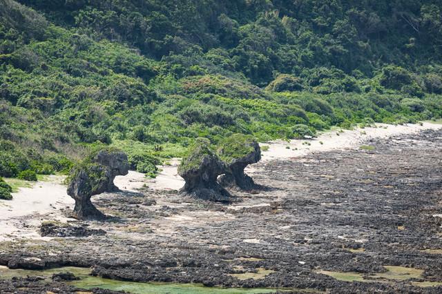 徳之島の奇岩の写真