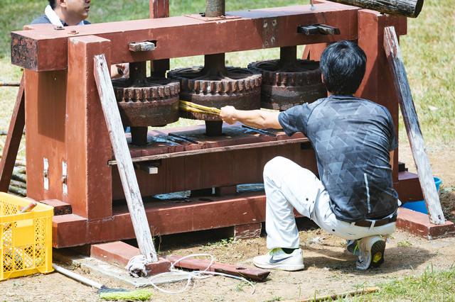 昔のサトウキビ圧搾機の写真