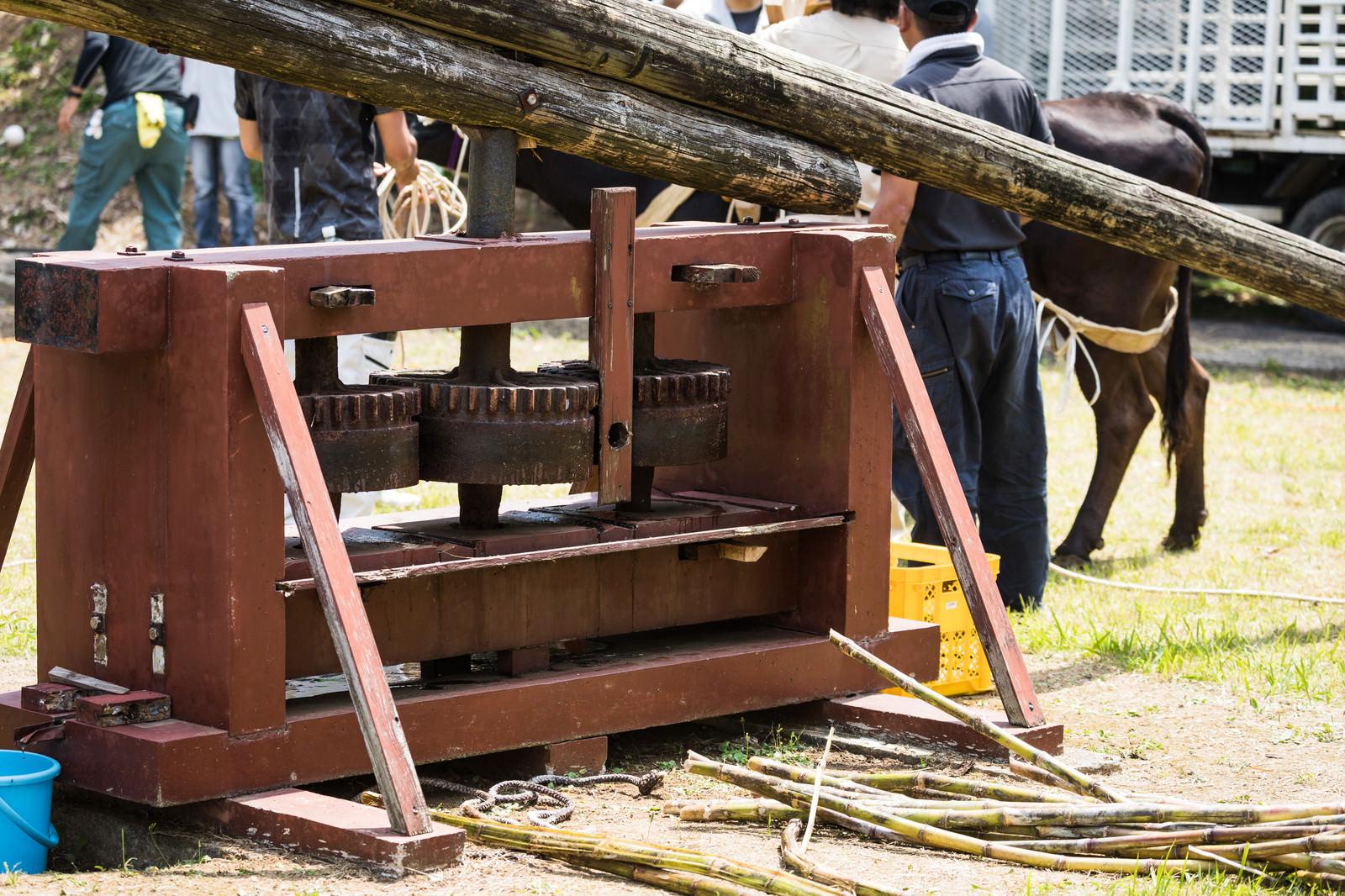 「徳之島黒砂糖まつりで使われる昔のサトウキビ圧搾機」の写真