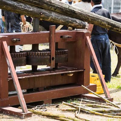 「徳之島黒砂糖まつりで使われる昔のサトウキビ圧搾機」の写真素材