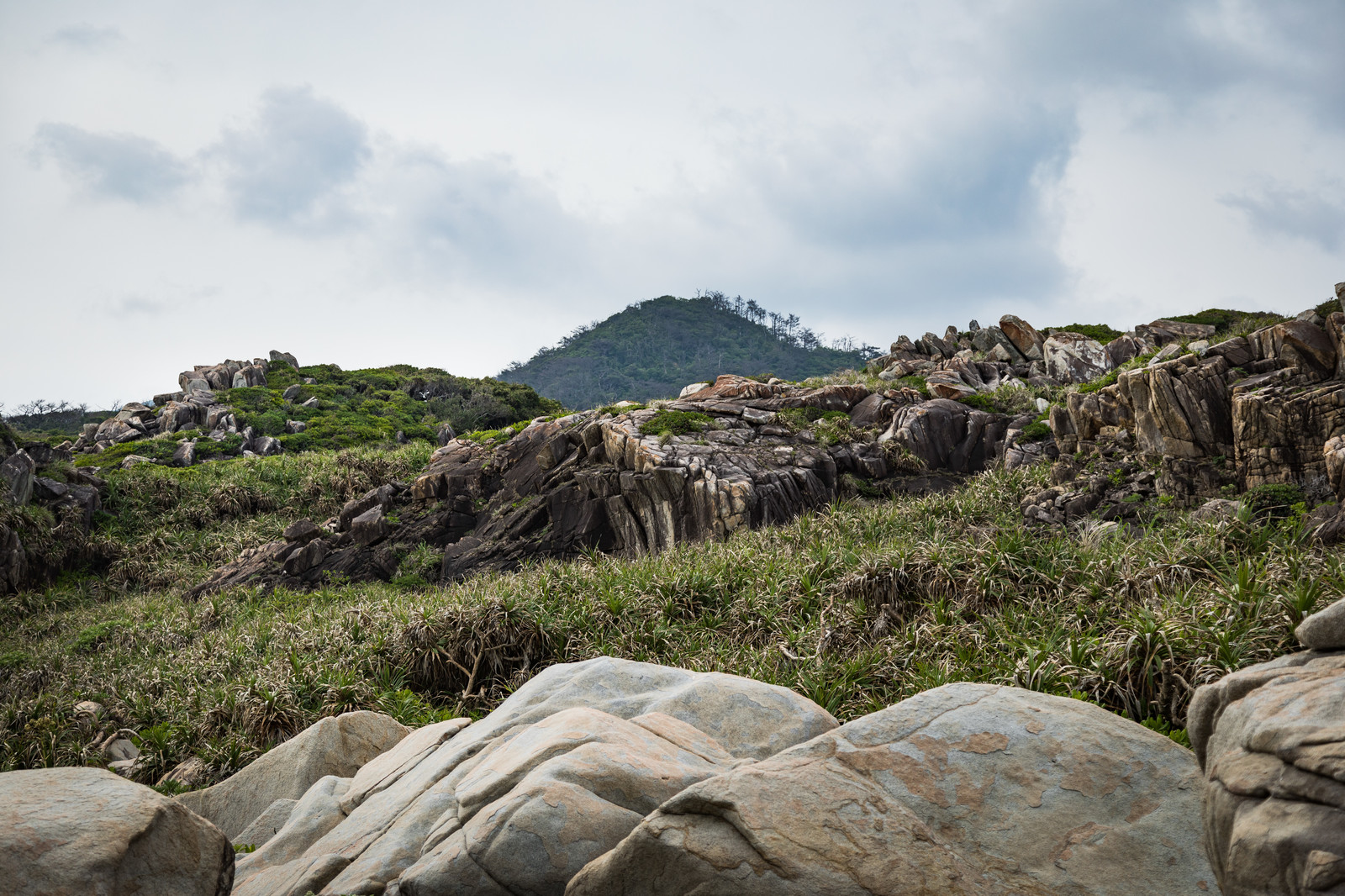 「奄美群島のムシロ瀬」の写真