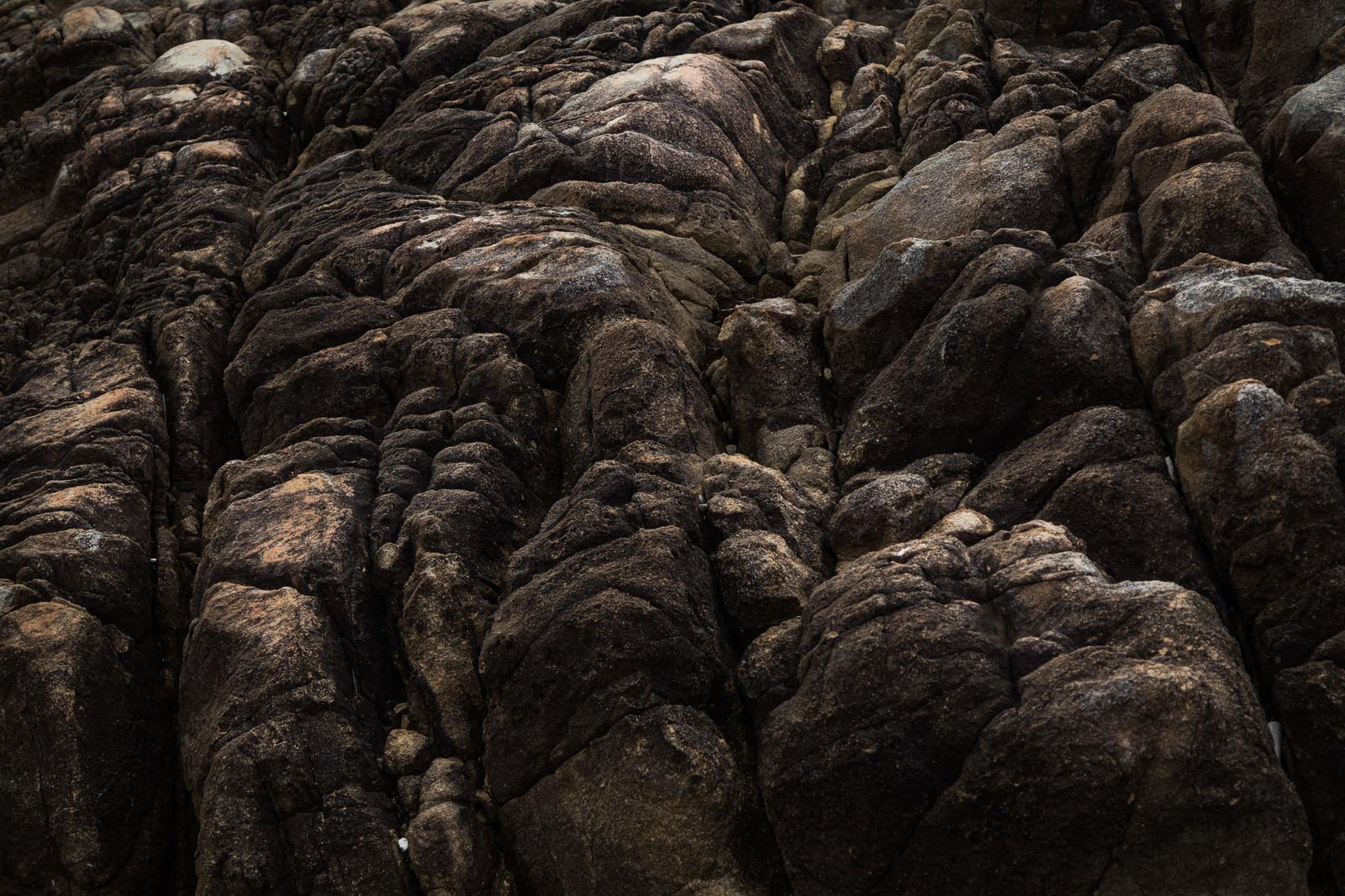 「樹皮のような岩石」の写真