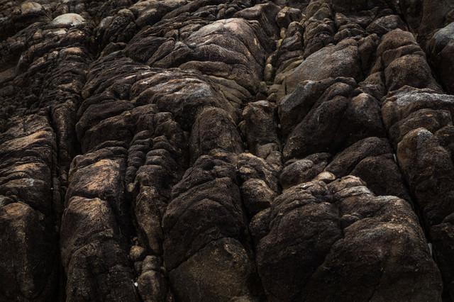樹皮のような岩石の写真