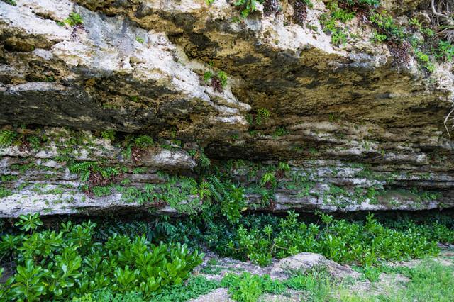 犬田布海岸前の岩壁の写真