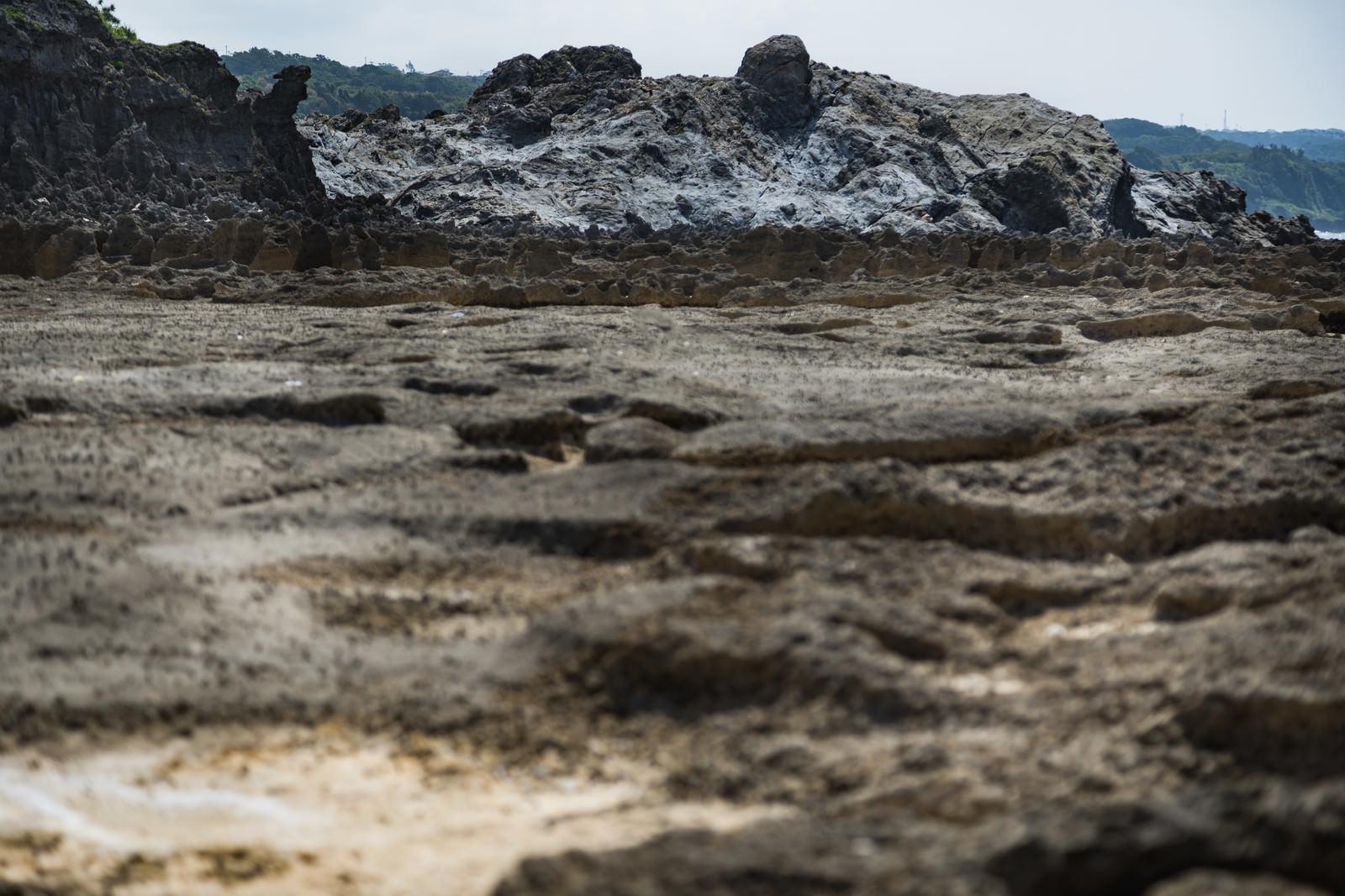 「犬田布海岸のメランジ堆積物」の写真