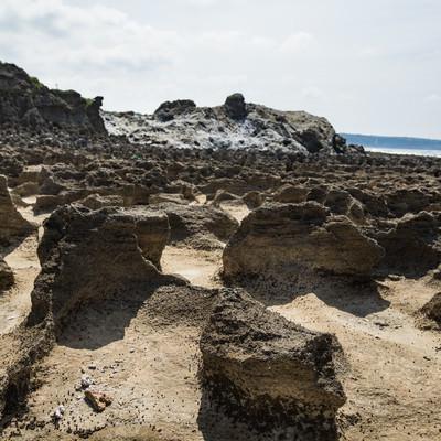 犬田布海岸のメランジ堆積物と隆起サンゴ礁跡の写真
