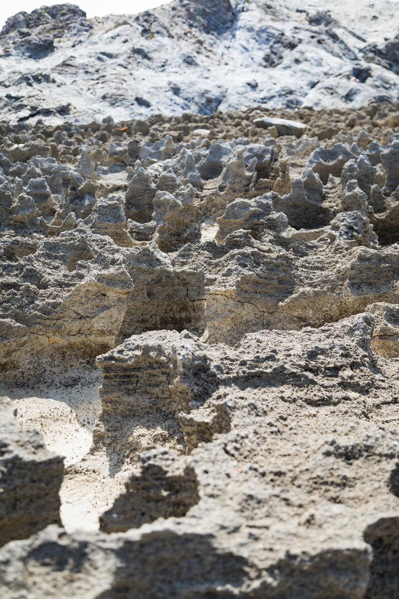 「メランジ堆積物とゴツゴツした隆起サンゴ礁」の写真