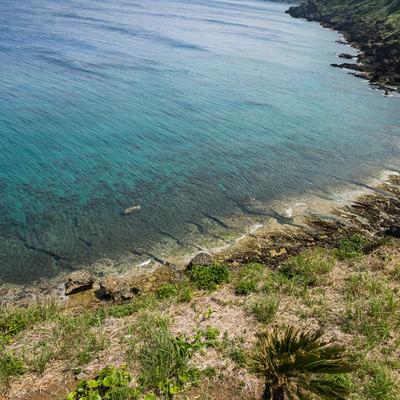 犬田布岬の海岸の写真