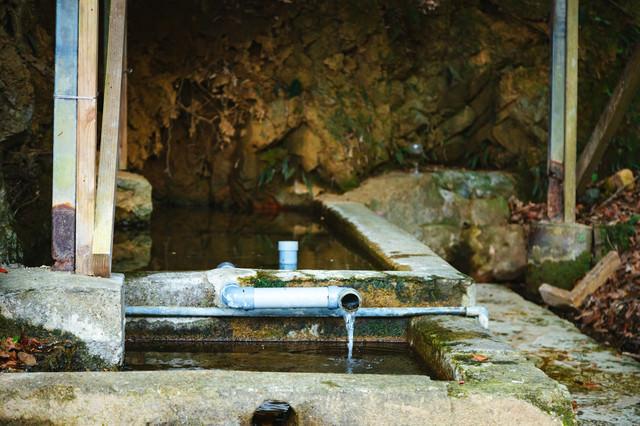 徳之島の貴重な湧水の写真