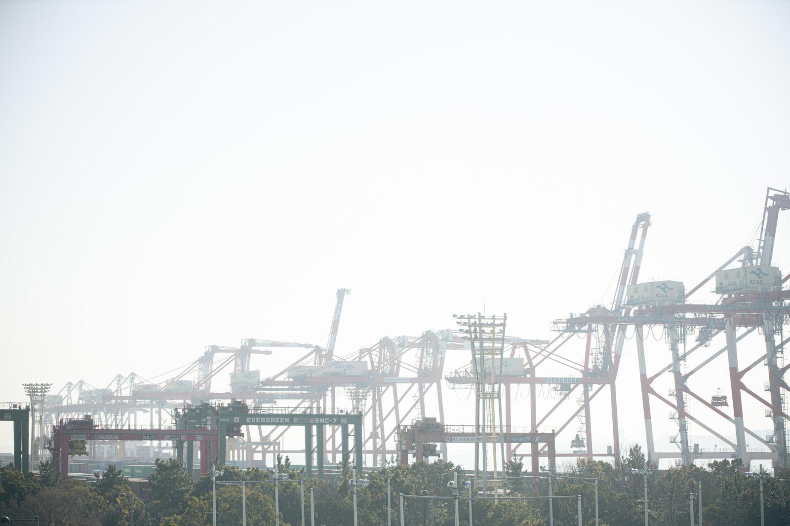 「港にそびえ立つガントリークレーン」の写真