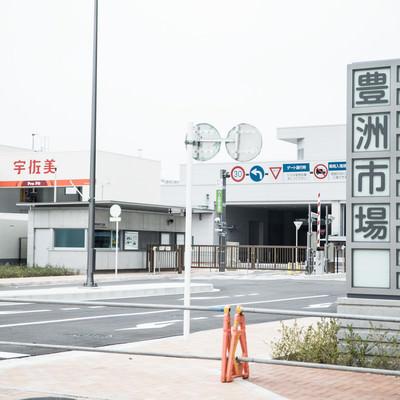 「豊洲市場の青果東門前」の写真素材