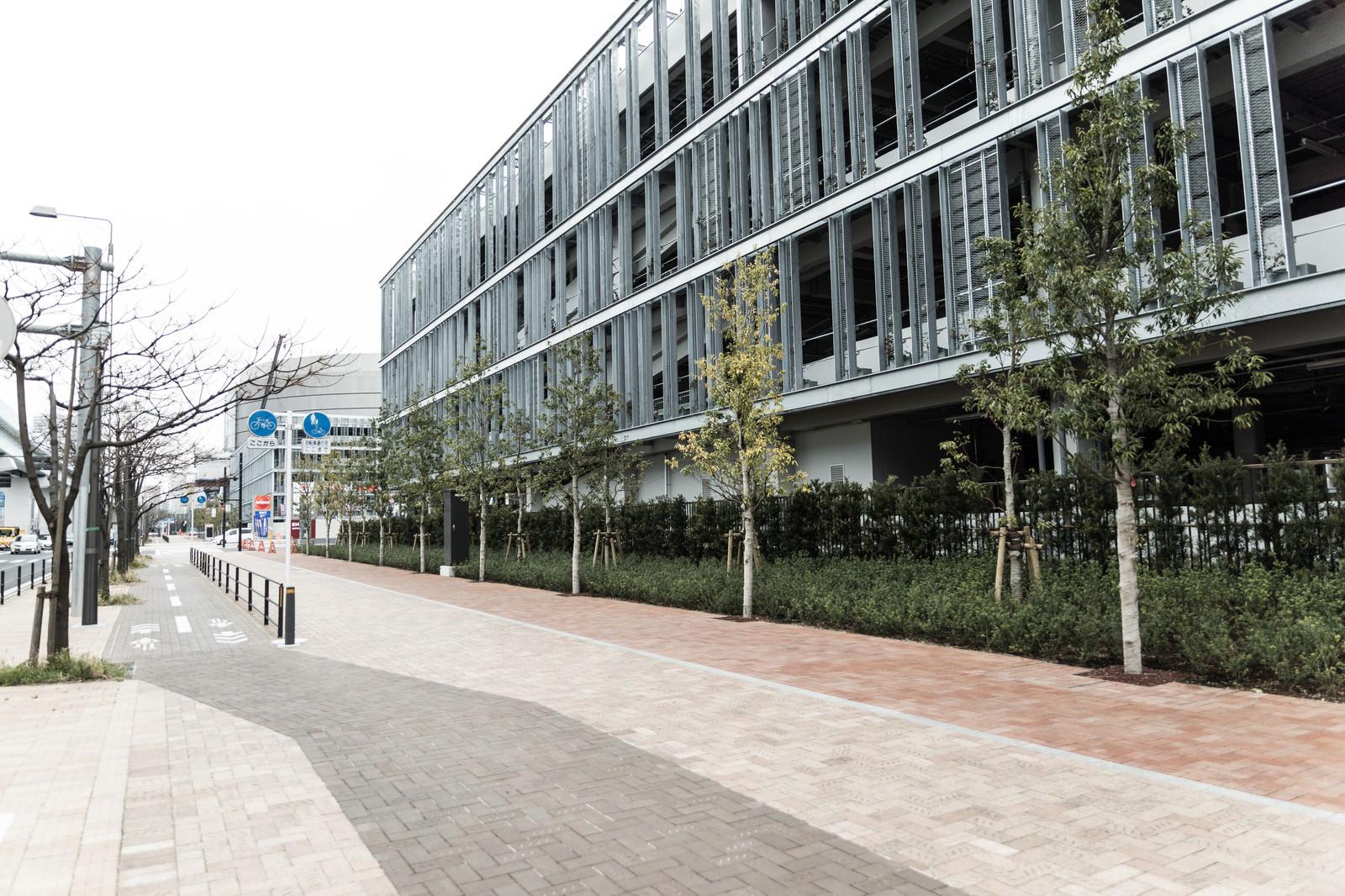 「豊洲市場の小口買参棟と歩道」の写真