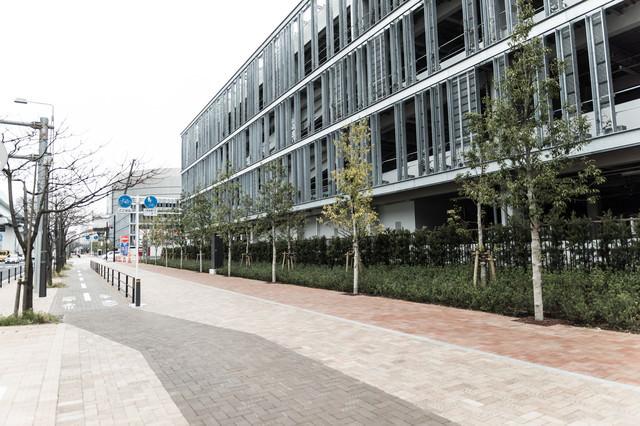 豊洲市場の小口買参棟と歩道の写真