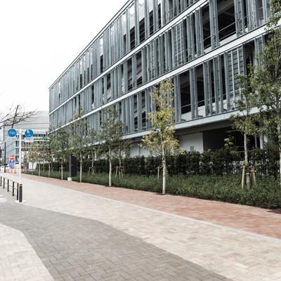 「豊洲市場の小口買参棟と歩道」の写真素材