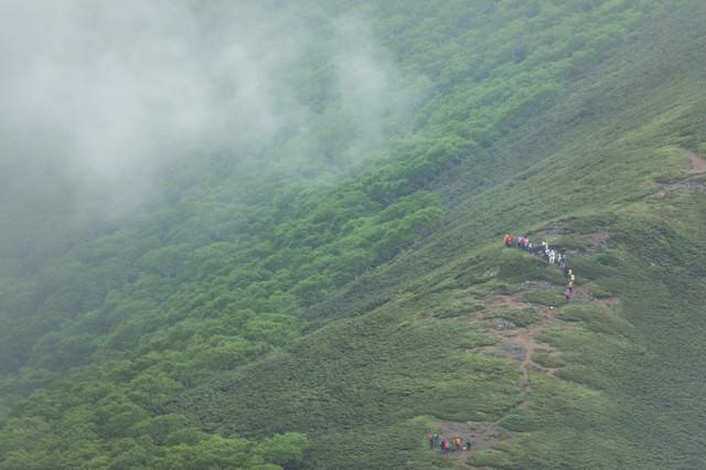 森林限界付近を歩く登山者達の写真