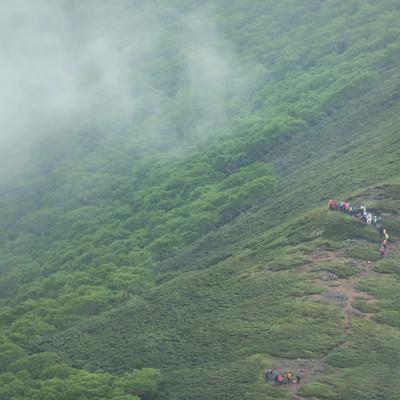「森林限界付近を歩く登山者達」の写真素材