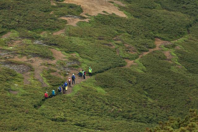 乗鞍新登山道を歩く登山者の列の写真