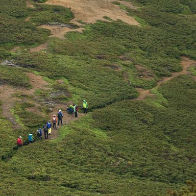 「乗鞍新登山道を歩く登山者の列」の写真素材