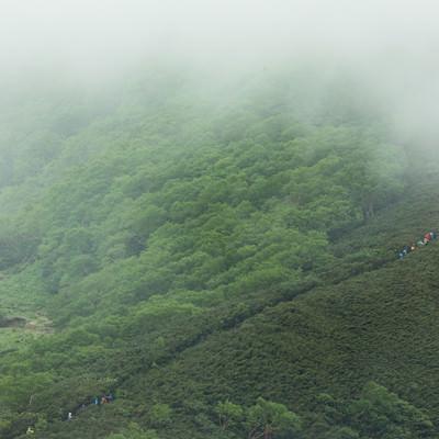 霧が多い山の中をすすむ登山者一行の写真