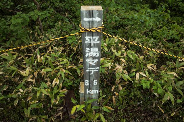 平湯マデ8.6km(乗鞍新登山道)の写真