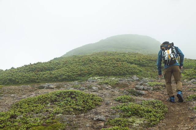 傾斜のある登山道を歩くの写真