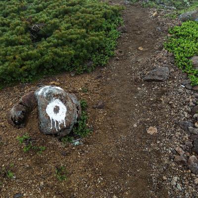 「登山道の目印」の写真素材
