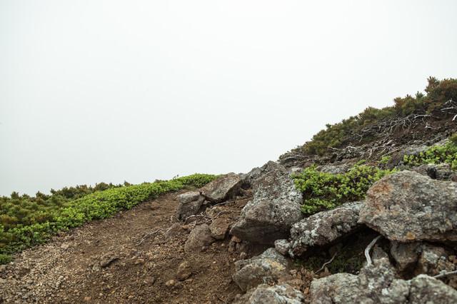 辺りが霧で真っ白な登山道の写真